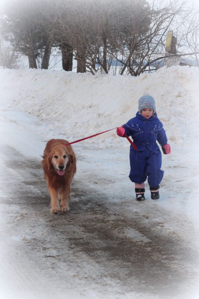 Children and Golden Retrievers are good companions