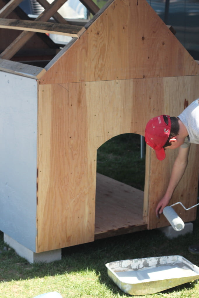 New Doghouses for Windy Knoll Goldens