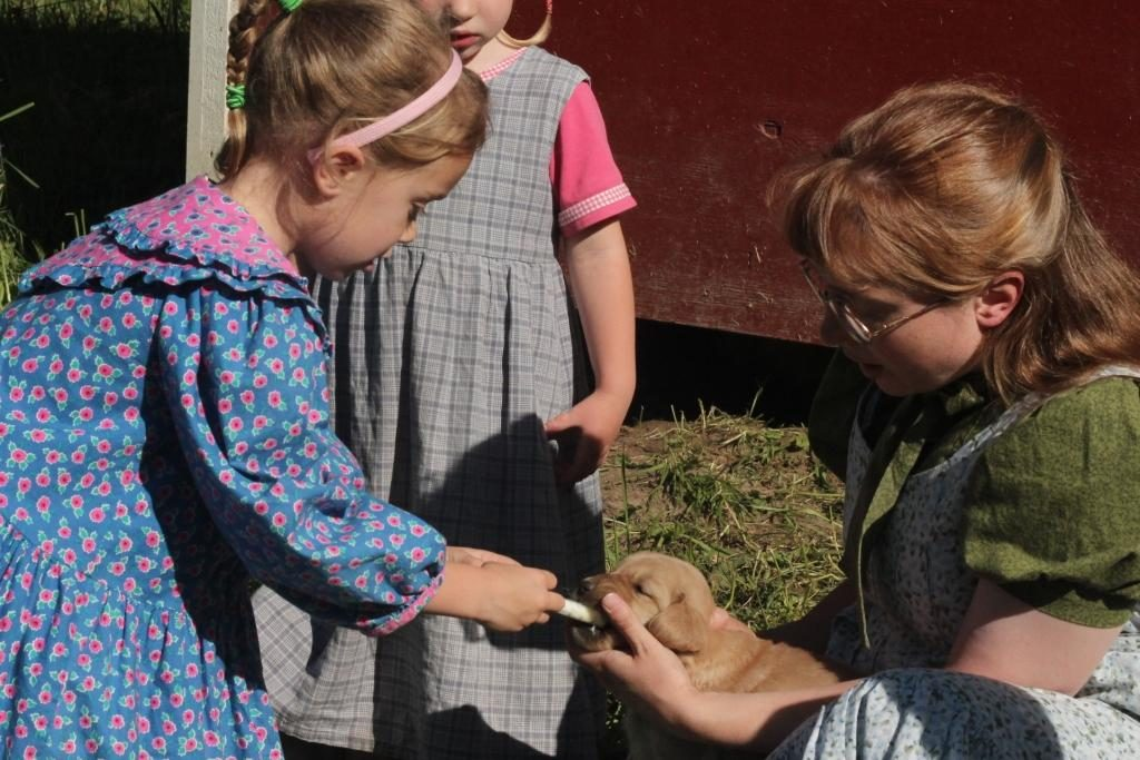 Mary Grace gives a hand with the dewomering of our New England raised puppies